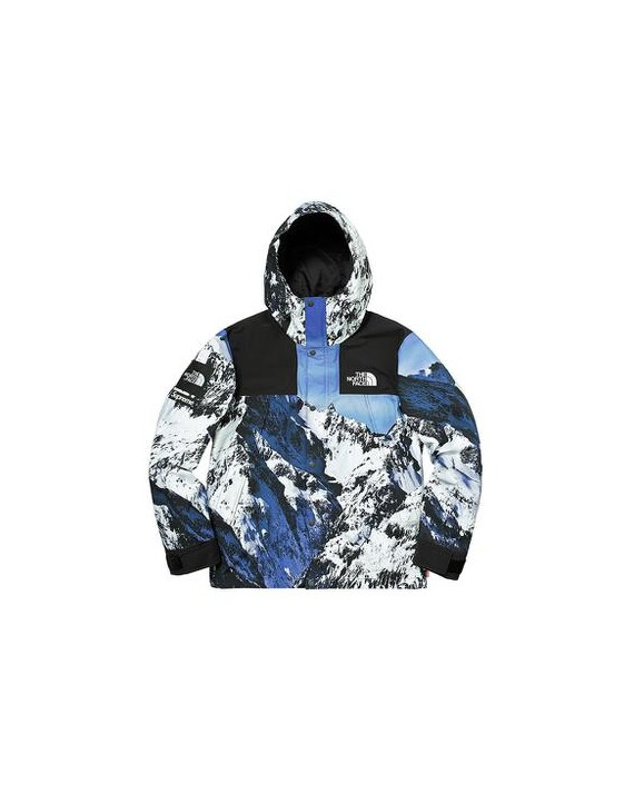 rivenditore all'ingrosso 053d6 47fba PROXY Supreme®/The North Face® Mountain Parka - STREETOUTLET